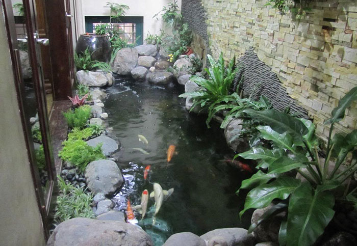 Mẫu hồ cá sân vườn đẹp