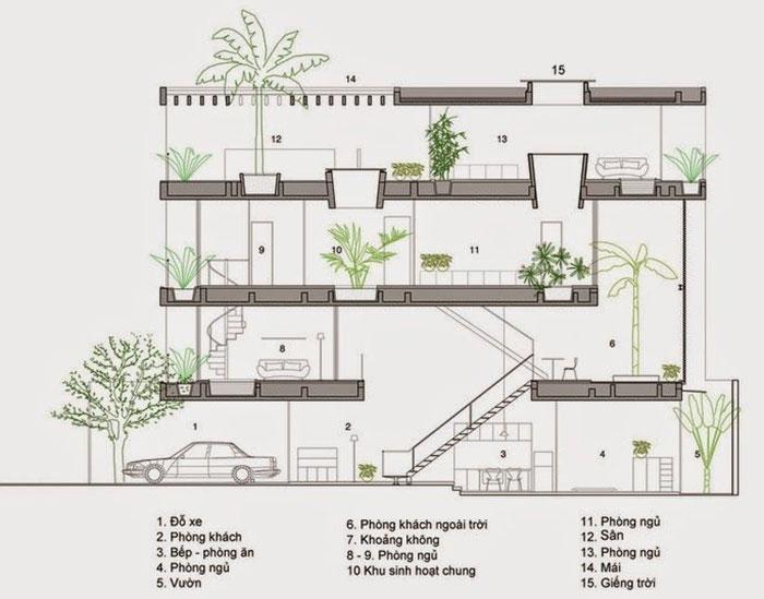 Thiết kế nhà có giếng giếng trời và nhiều tiểu cảnh cây xanh