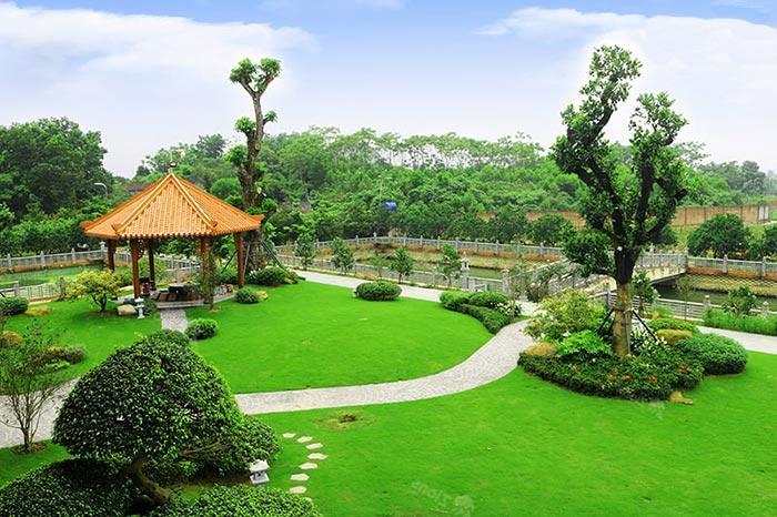 sân vườn đẹp đơn giản