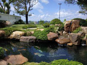 thi công hồ cá koi tại Quảng Ninh view 02