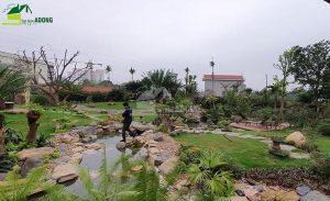 Thi công sân vườn biệt thự tại Bình Dương view 12