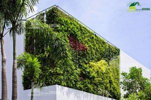 Thi công tường cây xanh ngoài trời biệt thự
