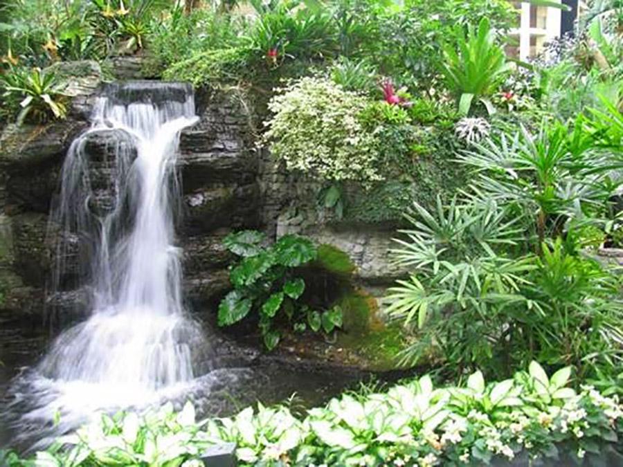 thiết kế thi công thác nước
