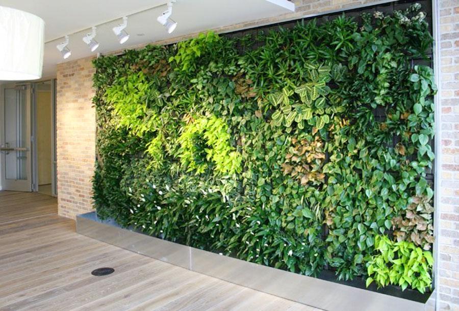 thiết kế thi công vườn tường đứng